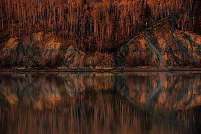 Photograph - Reflect by Chris Multop