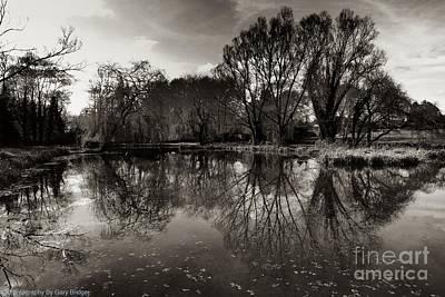 Photograph - Reflect  by Gary Bridger