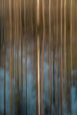Photograph - Reflect by Nicole Robinson