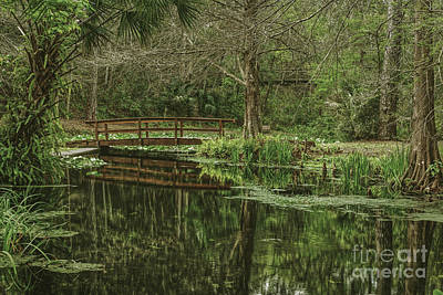 Palatka Bridge Photograph - Reflected Bridge by Marvin Reinhart