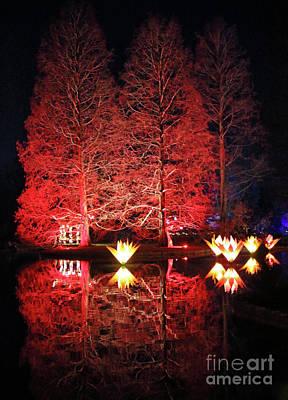 Photograph - Reflected Illuminated Trees Wisley by Julia Gavin