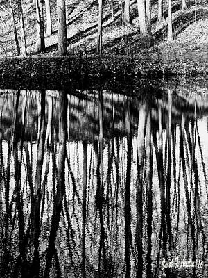 Photograph - Reflected Landscape Patterns by Carol F Austin