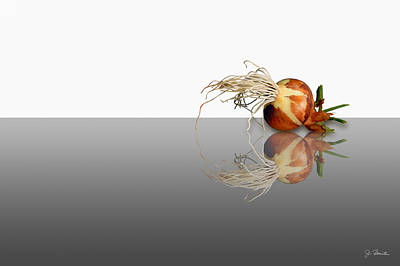 Photograph - Reflected Onion by Joe Bonita