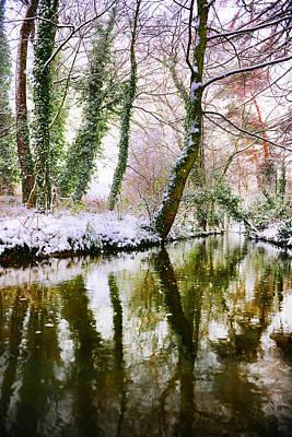 Reflected Winter Art Print
