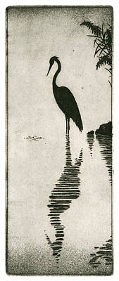 Egret Drawing - Reflecting by Charles Harden