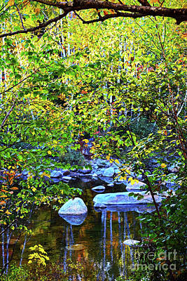 Photograph - Reflecting In New Hampshire by Patti Whitten