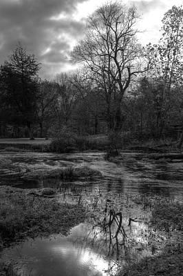Photograph - Reflecting Life by Deb Buchanan