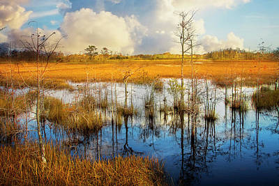 Photograph - Reflecting On A Golden Evening by Debra and Dave Vanderlaan