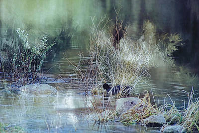 Reflecting On A Misty Morning Art Print