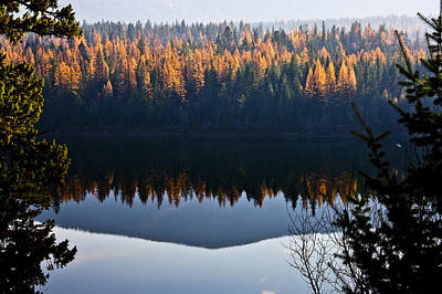 Photograph - Reflecting On Autumn by Albert Seger
