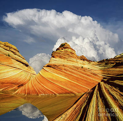 Photograph - Reflecting On The Wave by Bob Christopher