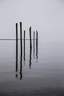 Photograph - Reflecting Poles by Karol Livote