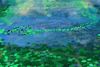 Digital Art - Reflecting Pond by Victor Shelley