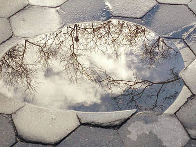 Photograph - Reflecting Puddle by Cate Franklyn