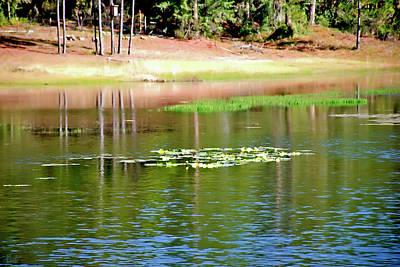 Photograph - Reflecting Spring Lake by Gina O'Brien