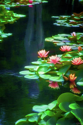 Photograph - Reflecting Water Lily Pond by Dee Browning