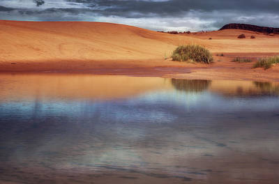 Coral Pink Sand Dunes Photograph - Reflection - 1 - Coral Pink Sand Dunes - Utah by Nikolyn McDonald