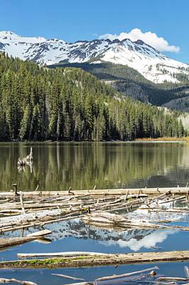 Photograph - Reflection Among Logs by Denise Bush