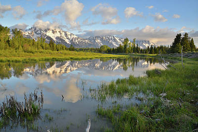 Photograph - Reflection In Snake River At Grand Teton by Ray Mathis