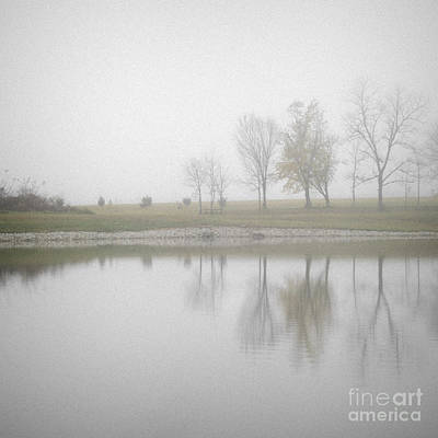 Photograph - Reflection In The Fog by Tamara Becker