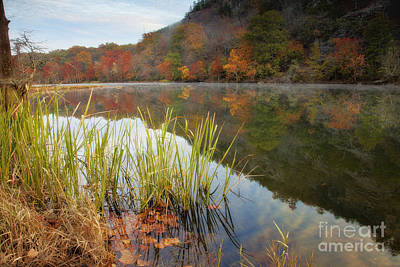 Reflection In The Fort River Art Print by Iris Greenwell