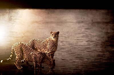 Cheetah Digital Art - Reflection by Linda Johnsen