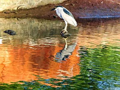 Reflection Of A Bird Art Print by Kathy Tarochione