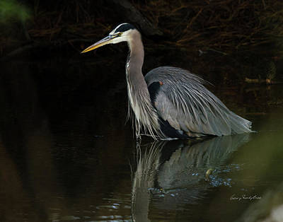 Reflection Of A Heron Art Print by George Randy Bass