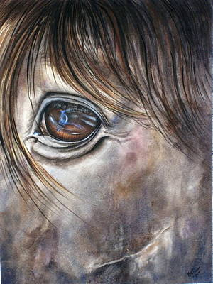 Reflection Of A Painted Pony Art Print by Mary McCullah