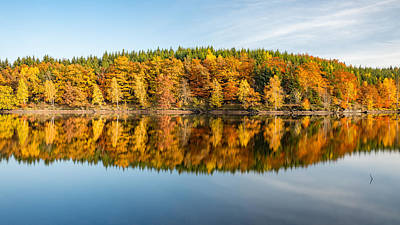 Reflection Of Autumn Art Print by Andreas Levi
