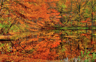 Reflection Of Autumn Art Print