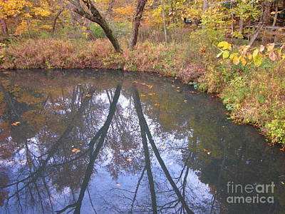 Photograph - Reflection Of Beauty by Kathie Chicoine