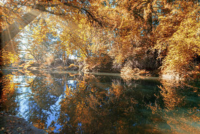 Photograph - Reflection Of Crabtree Creek In Fall Season by David Gn