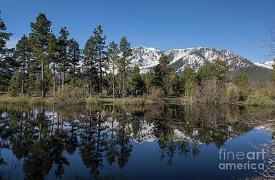 Reflection Of Mount Tallac Art Print by Webb Canepa