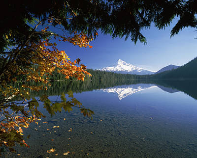 Reflection Of Mountain And Trees Art Print by Panoramic Images
