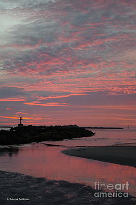 Photograph - Reflection Of Pink by Tannis Baldwin