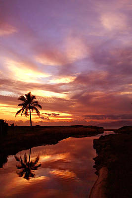 Photograph - Reflection Of Sunset Palm Tree River Maui Hawaii by Pierre Leclerc Photography