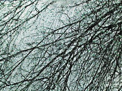 Photograph - Reflection On A Car Windshield by Sarah Loft