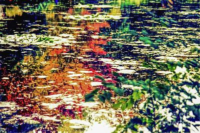 Photograph - Reflection On Oscar - Claude Monet's  Garden Pond  by D Davila
