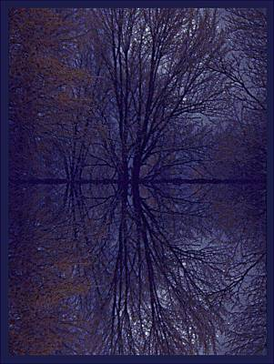 Photograph - Reflection On Trees In The Dark by Joy Nichols
