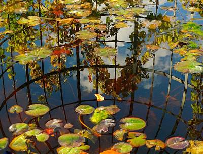 Photograph - Reflection Pond by My Lens and Eye - Judy Mullan -