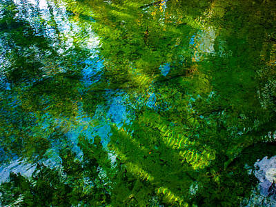 Photograph - Reflection by Randy Sylvia