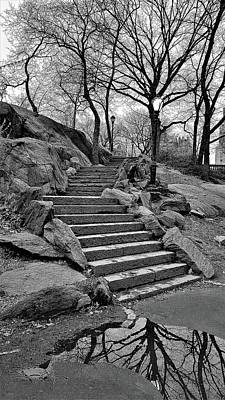 Photograph - Reflection Steps Central Park N Y C by Rob Hans