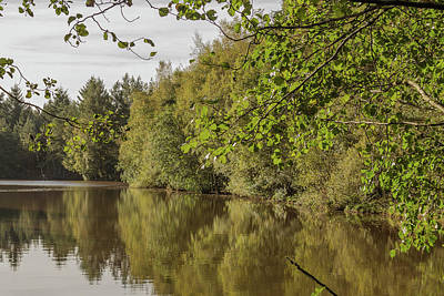 Photograph - Reflections 1 by Wendy Cooper