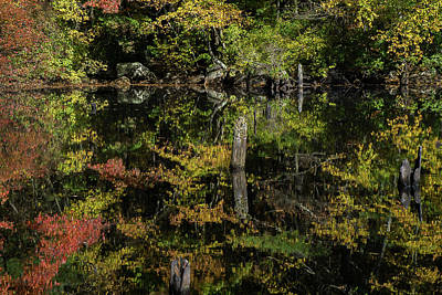 Reflection Photograph - Reflections All Around by Linda Howes