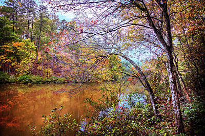 Photograph - Reflections Along The Trail by Debra and Dave Vanderlaan