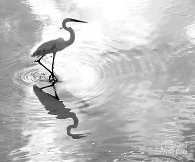 Reflections And Ripples Art Print