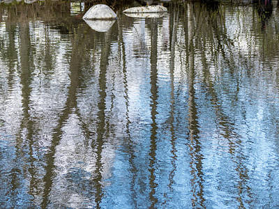 Photograph - Reflections And Rocks by Robin Zygelman