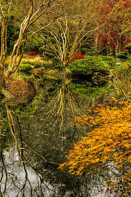 Photograph - Reflections At Japanese Gardens by Barbara Bowen
