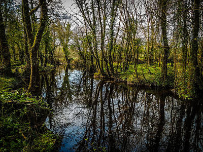 Photograph - Reflections At Yeats Thoor Ballylee by James Truett